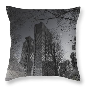 Mud Puddle Reflection I Throw Pillow by Anna Villarreal Garbis