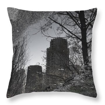 Mud Puddle Reflection II Throw Pillow by Anna Villarreal Garbis
