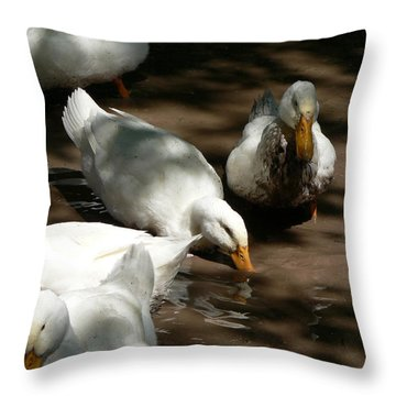 Muddy Ducks Throw Pillow