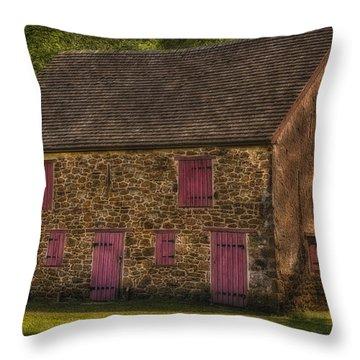 Mule Barn  Throw Pillow by Susan Candelario