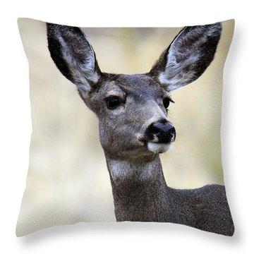 Mule Deer Doe Throw Pillow by Steve McKinzie