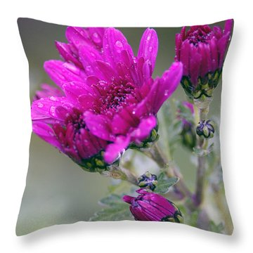 Mum With Raindrops Throw Pillow by Sharon Talson