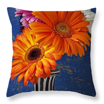 Mums In Striped Vase Throw Pillow by Garry Gay