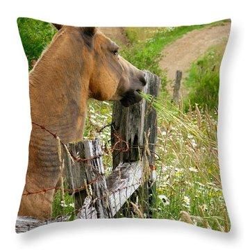Munching On Daisies Throw Pillow