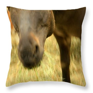 Munching Out Throw Pillow by Karol Livote