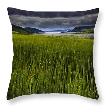 Munlochy Bay Throw Pillow