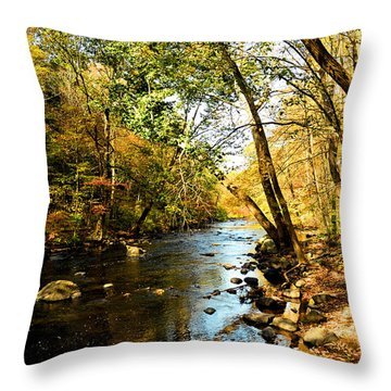 Throw Pillow featuring the photograph Musconetcong River by Brian Hughes