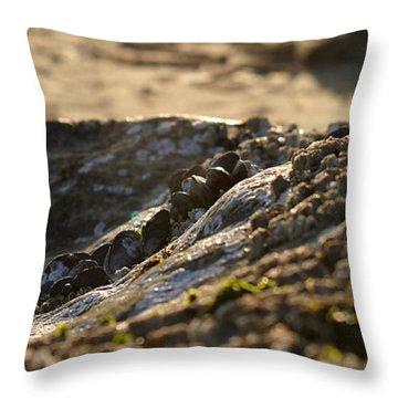 Mussels Sunset Throw Pillow