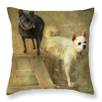 My Chihuahua Girlz  Throw Pillow