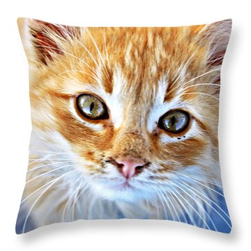 My Face Is Just A Wee Bit Dirty Throw Pillow by KayeCee Spain