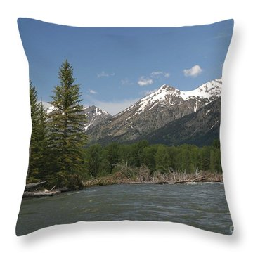 Throw Pillow featuring the photograph My Favorite Of The Grand Tetons by Living Color Photography Lorraine Lynch