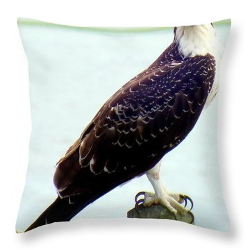 My Feathered Friend Throw Pillow by Karen Wiles