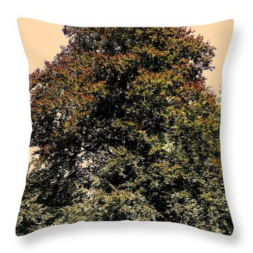 My Friend The Tree Throw Pillow by Juergen Weiss