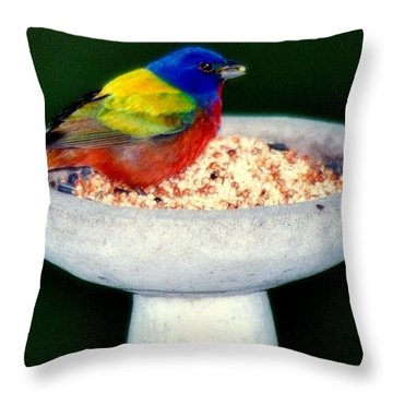 My Painted Bunting Throw Pillow by Karen Wiles