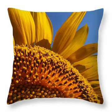 My Pretty Throw Pillow by Skip Hunt