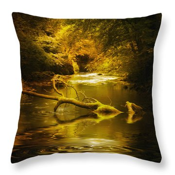Mystery In Forest Throw Pillow by Svetlana Sewell