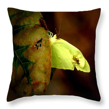 Mystical World Throw Pillow