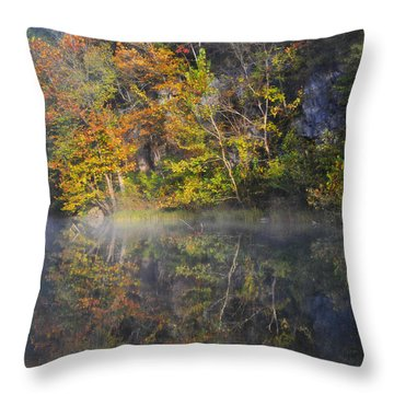Mysty Morn On The Current Throw Pillow by Marty Koch