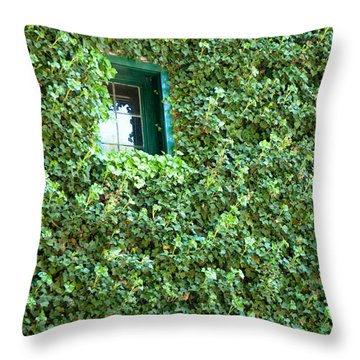 Throw Pillow featuring the photograph Napa Wine Cellar Window by Shane Kelly