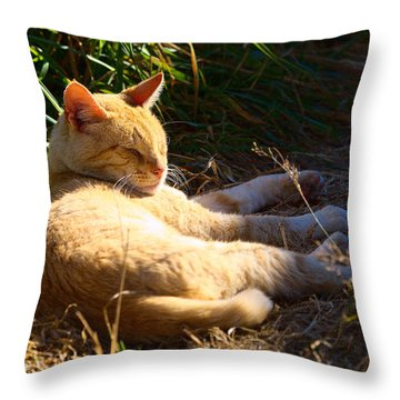 Napping Orange Cat Throw Pillow