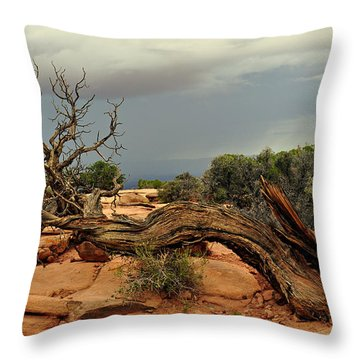 Narley Tree Throw Pillow by Marty Koch