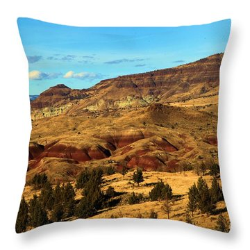 Natural Paint Throw Pillow by Adam Jewell
