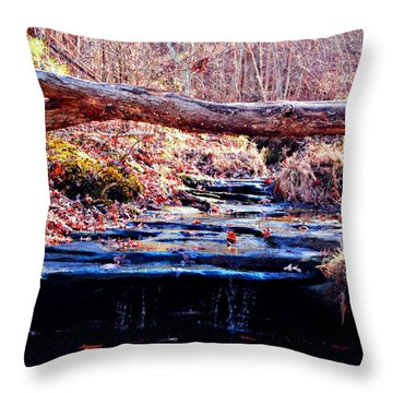 Throw Pillow featuring the photograph Natural Spring Beauty  by Peggy Franz