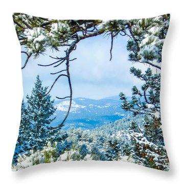 Throw Pillow featuring the photograph Natural Wreath by Shannon Harrington