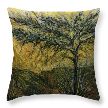 Nature Landscape Green Thorns Acacia Tree Flowers Sunset In Yellow Clouds Sky  Throw Pillow