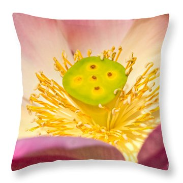 Throw Pillow featuring the photograph Nature by Luciano Mortula