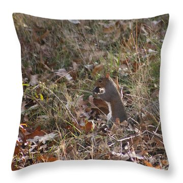 Throw Pillow featuring the photograph Nature's Animals by Michael Waters