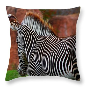 Nature's Barcode Throw Pillow