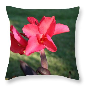 Throw Pillow featuring the photograph Nature's Beauty by Michael Waters