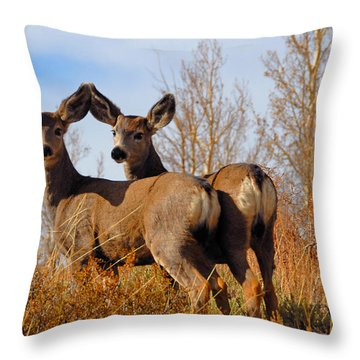 Throw Pillow featuring the photograph Nature's Gentle Beauties by Lynn Bauer