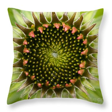 Nature's Geometry Throw Pillow