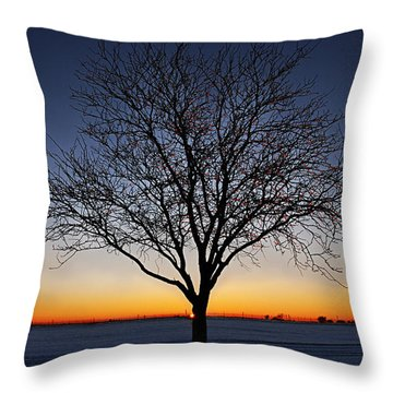 Nature's Light Throw Pillow by Melany Sarafis