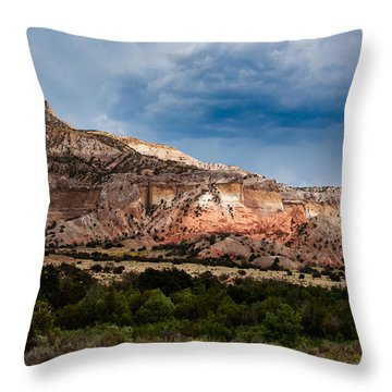 Nature's Paintbrush Throw Pillow