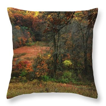 Nature's Paints Throw Pillow