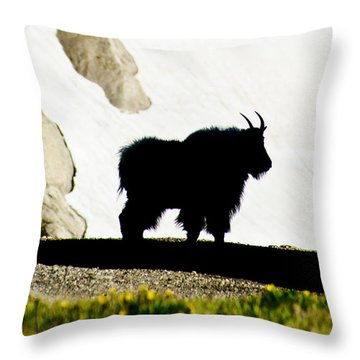 Throw Pillow featuring the photograph Nature's Silhouette by Colleen Coccia