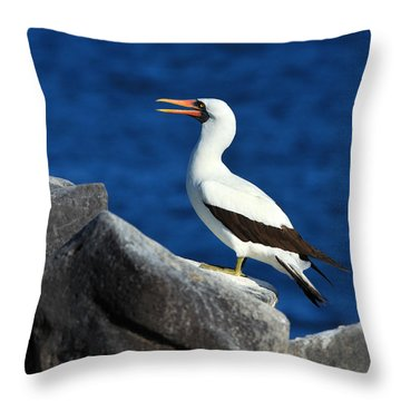 Nazca Booby Throw Pillow by Tony Beck