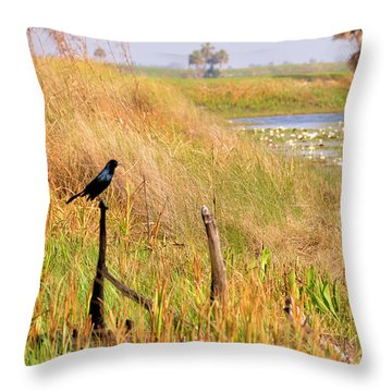 Near And Far Throw Pillow by Jan Amiss Photography