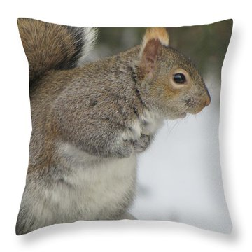 Throw Pillow featuring the photograph Need Boots And Gloves by Maciek Froncisz