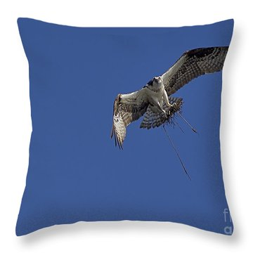 Throw Pillow featuring the photograph Nest Builder by Anne Rodkin