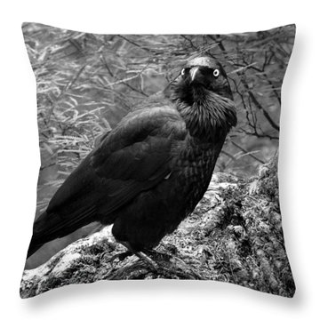 Nevermore - Black And White Throw Pillow