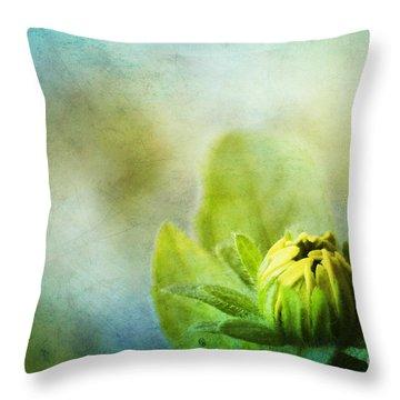 New Beginnings Throw Pillow by Darren Fisher