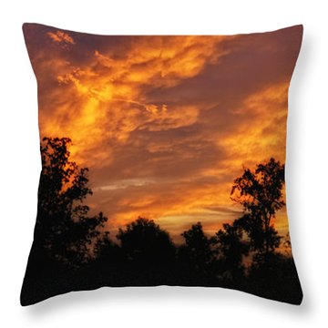 New Beginnings Throw Pillow by Shari Nees