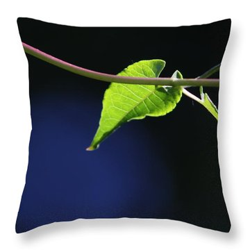Throw Pillow featuring the photograph New Growth by Cathie Douglas