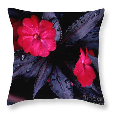New Guinea Impatiens Throw Pillow by Tom Wurl
