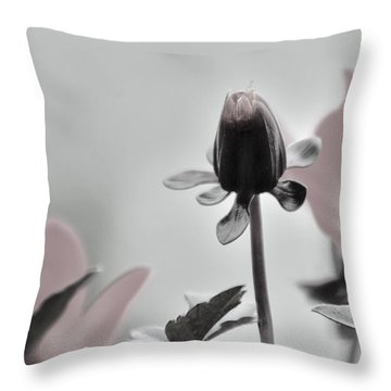 Throw Pillow featuring the digital art New Life by Holly Ethan