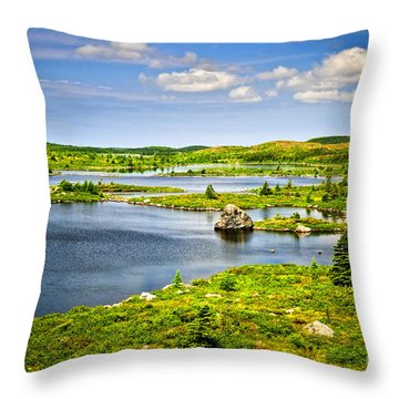 Newfoundland Landscape Throw Pillow by Elena Elisseeva